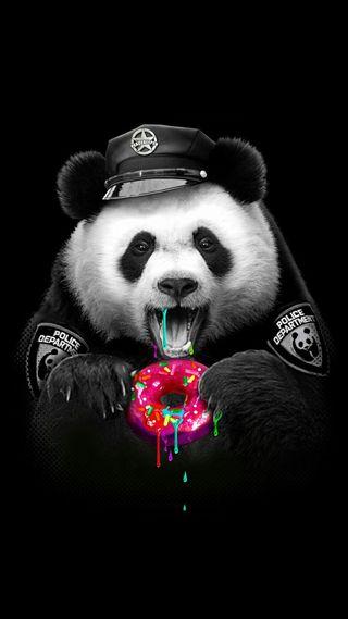 Обои на телефон полиция, еда, панда, медведь, животные, вкусный, hungry, donuts
