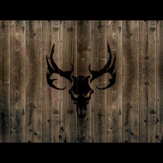 Обои на телефон олень, череп, страна, охотник, buck