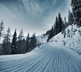 Обои на телефон путь, зима, winter path, lg, g3, 2880x2560