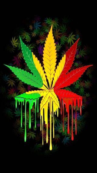 Обои на телефон символ, цветные, раста, rasta colors, medicine