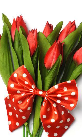 Обои на телефон лук, тюльпаны, милые, красые, red tulips, cute bow