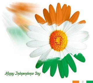 Обои на телефон пожелания, цветы, флаг, независимость, индия, индийские, день