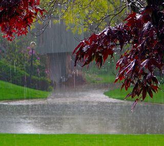 Обои на телефон дождь