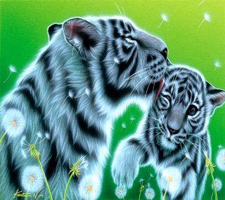 Обои на телефон тигр, -----------