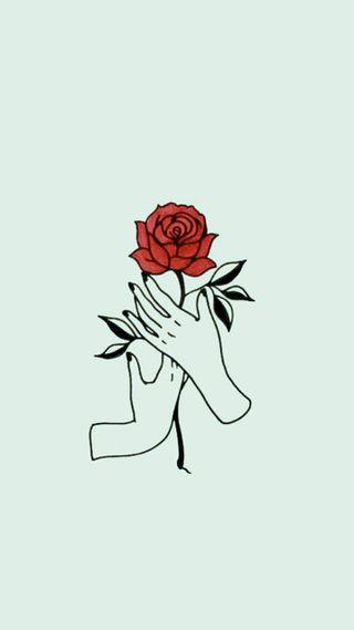 Обои на телефон руки, цветы, розы