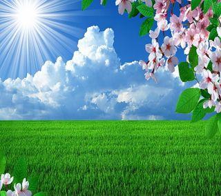 Обои на телефон цвести, солнечный свет, время, весна, spring time