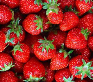 Обои на телефон ягоды, свежие, красые, клубника