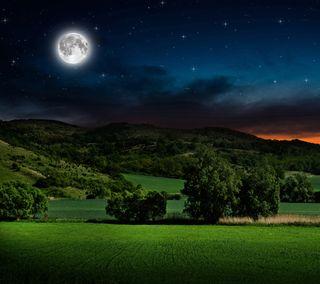 Обои на телефон горизонт, поле, небо, лунный, луна, дерево