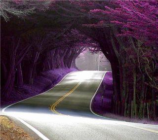 Обои на телефон фиолетовые, туннель, стены, природа
