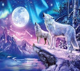 Обои на телефон волк, wolves-------------, -------------