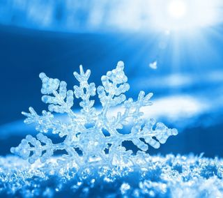 Обои на телефон холодное, снежинки, снег, зима