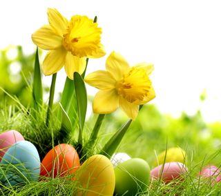 Обои на телефон яйца, пасхальные, цветы, время, весна, spring time
