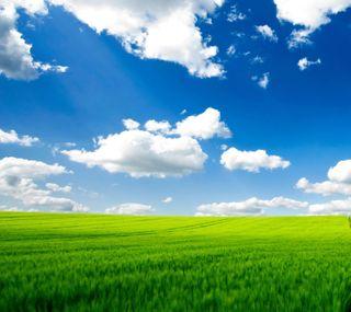 Обои на телефон чистые, природа, пейзаж, hd