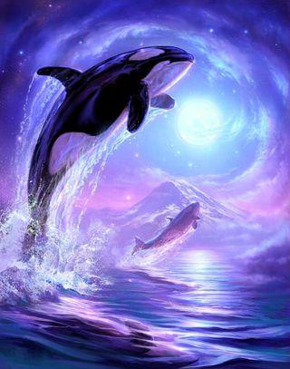 Обои на телефон киллер, синие, океан, небо, море, кит, whales, touching the sky, killer whale