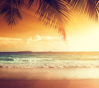Обои на телефон рай, природа, пляж, песок, море, лето, андроид, wallapaer, android