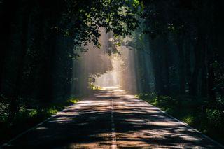 Обои на телефон long ride, autumn pictures, природа, свет, дорога, осень, солнечный свет, фотографии, поездка, длинный