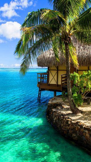 Обои на телефон тропические, рай, пляж, пальмы, остров, океан, море, новый, деревья