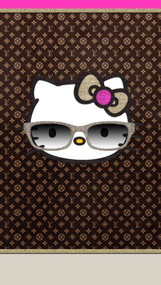 Обои на телефон солнечные очки, привет, крутые, котята, cool kitty