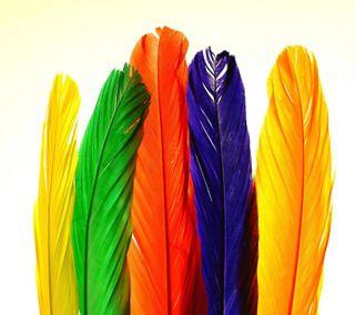Обои на телефон перья, приятные, красочные, взгляд, colorful feathers
