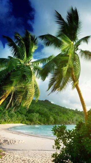 Обои на телефон рай, песок, тропические, пляж, пальмы, море, seychelles
