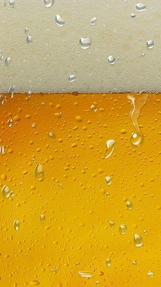 Обои на телефон холод, счастливые, пиво, забавные, вода, fondo, cerveza