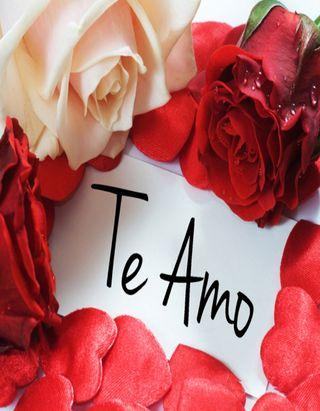 Обои на телефон любовь, красные, te amo, rosas, parejas, letras, coazon
