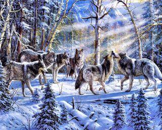 Обои на телефон картина, снег, зима, дикий, деревья, волк