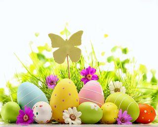 Обои на телефон яйца, пасхальные, цветы, счастливые, весна, happy