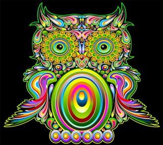 Обои на телефон цветные, сова, фон, красочные, векторные, абстрактные, colorful owl, colored owl