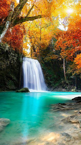 Обои на телефон река, природа, осень, дерево, вода