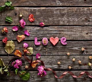 Обои на телефон лепестки, романтика, розы, любовь, дерево, love