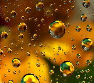Обои на телефон цветочные, пузыри, капли, вода