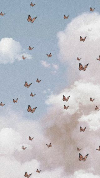 Обои на телефон мягкие, эстетические, небо, милые, бабочки, ангел, sky aesthetic, ethereal, butterfly aesthetic