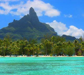 Обои на телефон пляж, пальмы, океан, деревья, bora bora