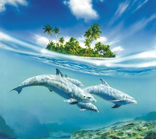 Обои на телефон танец, океан, дельфины, dolphin dance