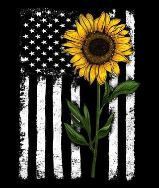 Обои на телефон подсолнухи, флаг, sunflower and flag