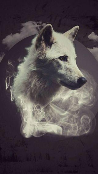Обои на телефон дым, волк, абстрактные, wolf smoke