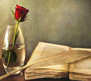 Обои на телефон книга, розы, красые, rose and book