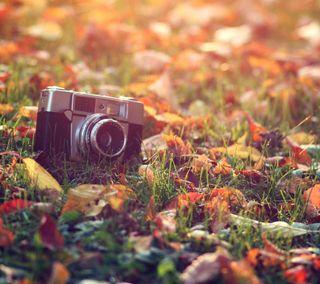 Обои на телефон камера, фото, старые, осень, винтаж