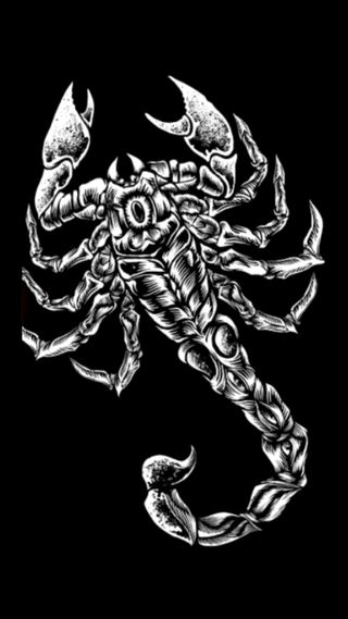 Обои на телефон скорпион, логотипы, wwe, wcw, tna, sting, smackdown, nxt, nwo