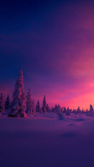 Обои на телефон зима, закат