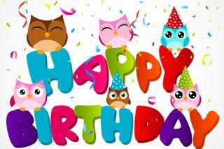 Обои на телефон празднование, счастливые, сова, пожелания, мультфильмы, день рождения, happy