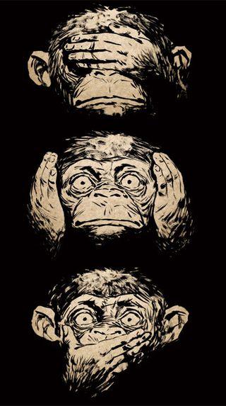 Обои на телефон обезьяны, лицо, monkey face