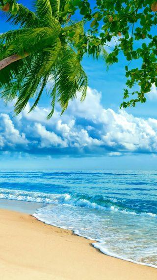 Обои на телефон фон, ультра, пляж, hd, full