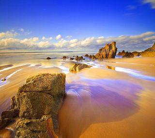 Обои на телефон взгляд, приятные, прекрасные, пляж, милые, sandy beach