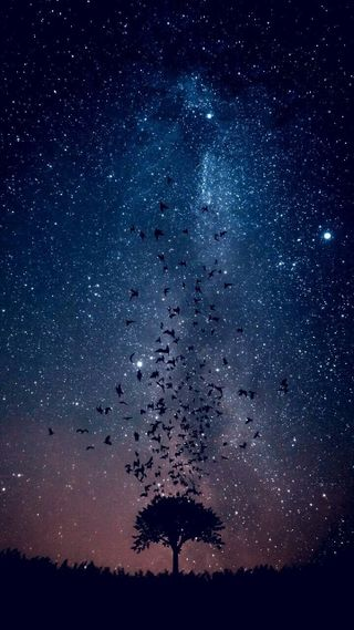 Обои на телефон военно морские, фиолетовые, ночь, небо, млечный, космос, звезды, звездное, звезда, hd