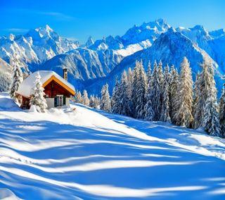 Обои на телефон взгляд, приятные, зима, winter dreaming