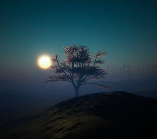 Обои на телефон ночь, закат, дерево, огни, холм, рассвет