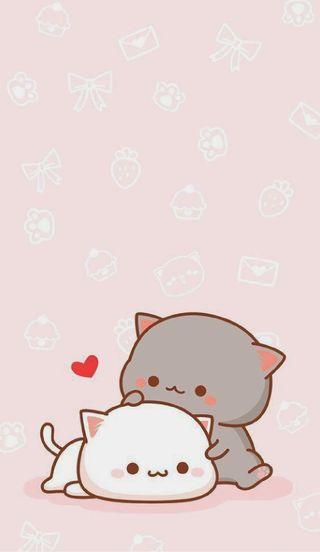 Обои на телефон коты, розовые, милые, кошки, каваи, cute cats