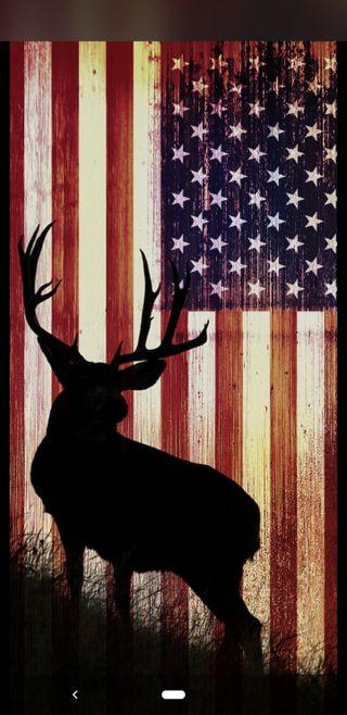 Обои на телефон охотник, олень, сезон, охота, америка